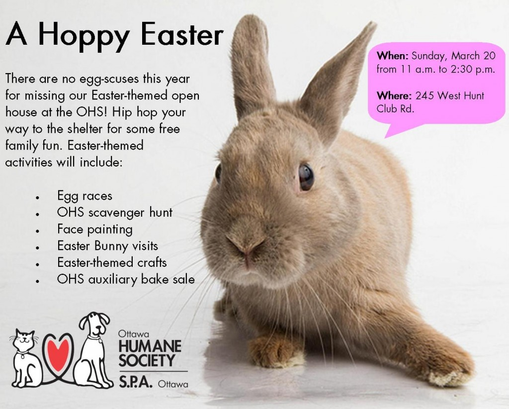 A Hoppy Easter Ad - FINAL