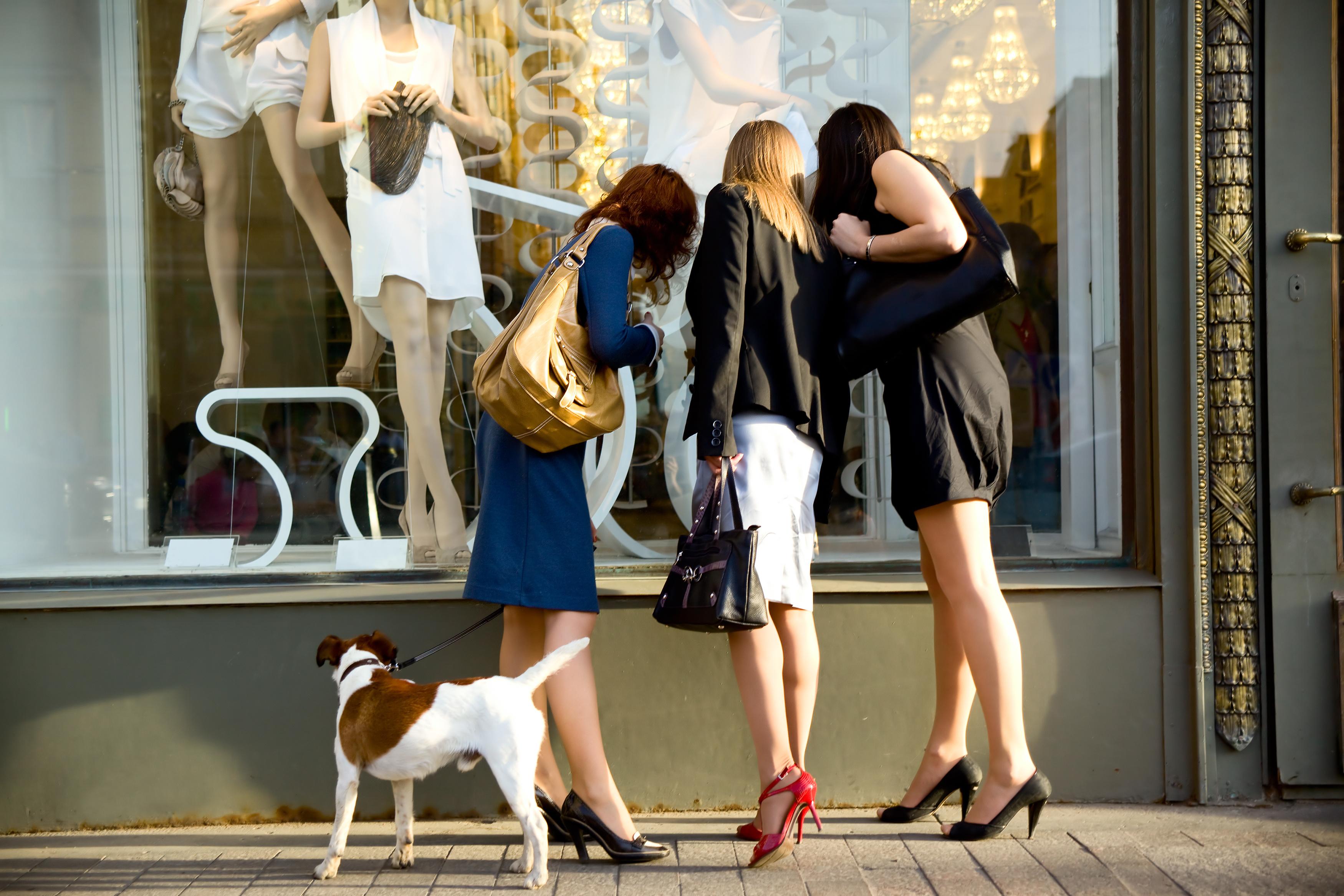 Dog-Friendly Business Program - Ottawa Humane Society